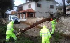 Los efectos del temporal en la Comunitat Valenciana: personas atrapadas, clases suspendidas y los puertos de Valencia y Sagunto cerrados durante 7 horas
