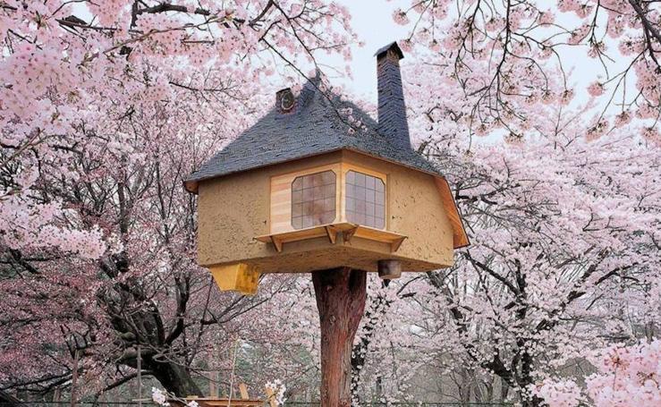 Fotos de las casas de árbol más bonitas del mundo