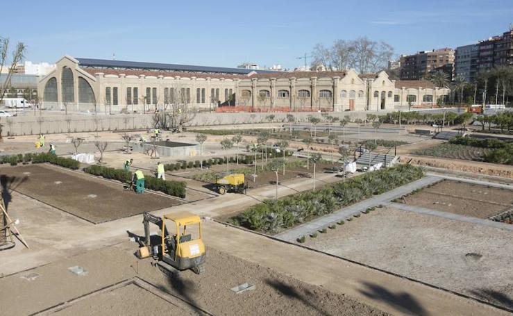 Fotos de las obras en el Parque Central