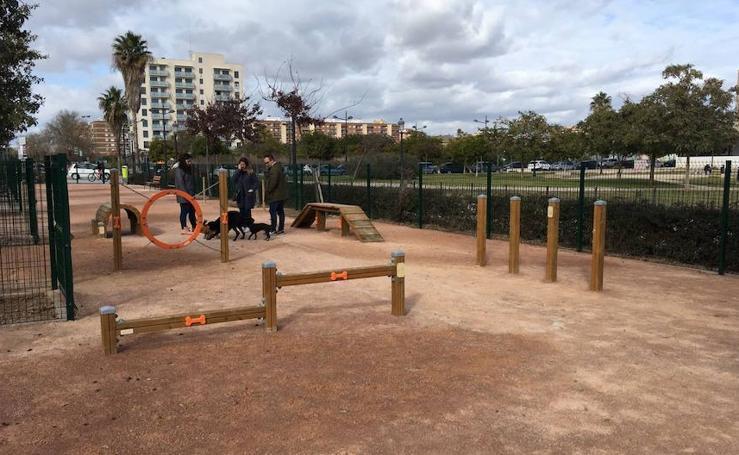 10 parques y jardines para disfrutar con tu perro