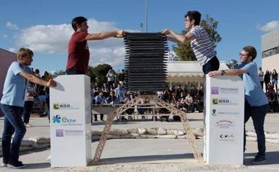 Un puente construido con 1.500 palillos de helado aguanta 928 kilos