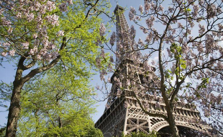 Fotos de los mejores destinos para visitar en primavera
