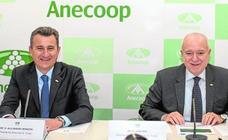 Anecoop alcanza la facturación más alta de su historia con 663 millones