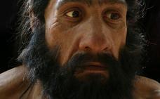 Los neandertales desarrollaron una gran nariz para sobrevivir al frío