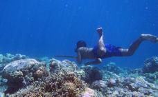 La ciencia desvela el secreto de los hombres pez, que aguantan hasta 13 minutos bajo el agua