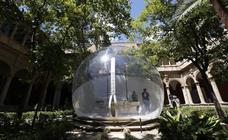 Las esculturas gigantes de Canevacci ya se pueden visitar en Valencia