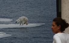 Fotografías para salvar el planeta