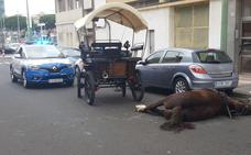 Fallece un caballo de tartana en plena calle