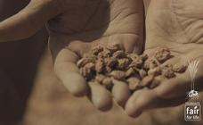 Tigernuts Traders, primera agroalimentaria de la Comunitat con sello 'Fair For Life'