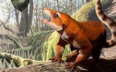 Un fósil de una liebre primitiva revela que Pangea se separó 15 millones de años más tarde de lo que se creía