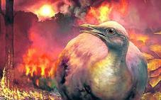 El asteroide que diezmó a los pájaros