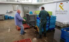 Retiran una tonelada de pescado ilegal en Calp y Cox