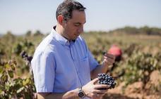 Diego Morcillo, de Coviñas, mejor enólogo del año