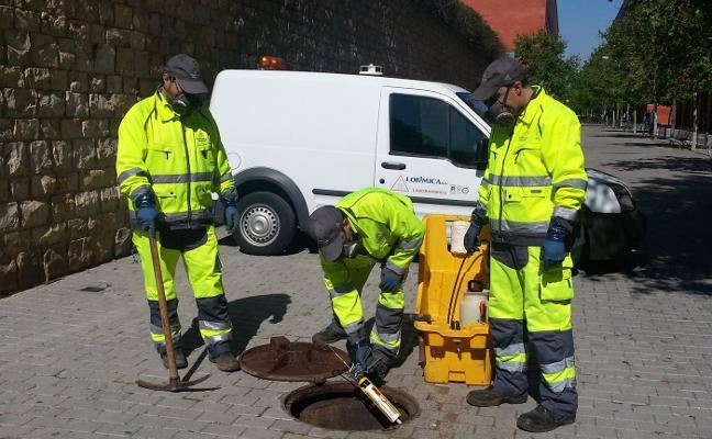 Valencia usa 300.000 litros de pintura en las alcantarillas contra la plaga de cucarachas
