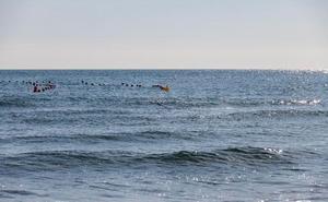 Gandia convierte una zona de la playa Nord en piscina para practicar natación en mar abierto