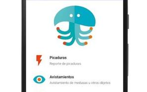 Crean una app para avisar en tiempo real de la presencia de medusas