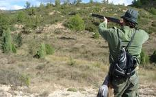 La temporada de caza en la Comunitat comenzará el 15 de julio