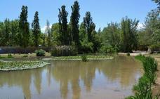 Cuestión de tamaño: un recorrido por los parques de Valencia según su extensión
