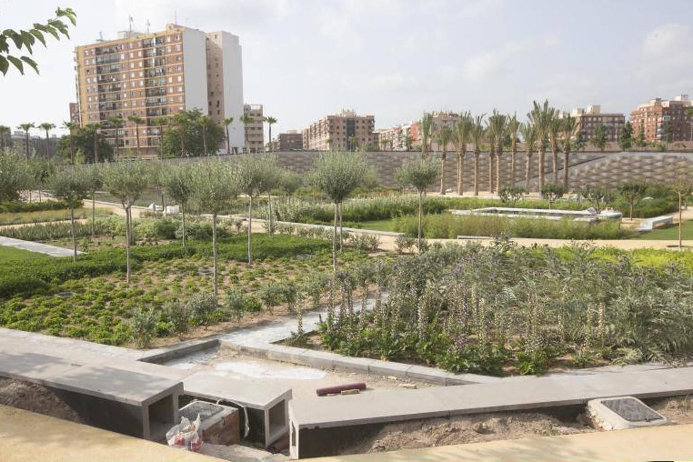Fotos del Parque Central de Valencia, que ultima su apertura