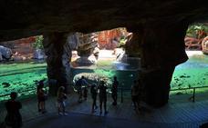 El Bioparc amplía las actividades gratuitas y experiencias salvajes para los meses de verano