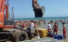 Una bala de paja aparece flotando en la playa de Gandia