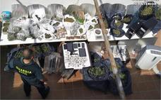 Detenidas 17 personas por vender droga en clubes de cannabis de Dénia, Xàbia, Calp y Benissa