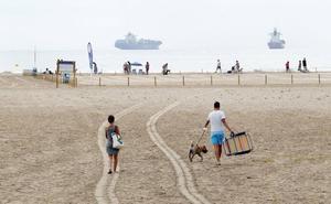 Dos nuevas playas valencianas se abren al baño con perros