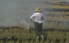 El Ayuntamiento de La Font de la Figuera convoca ayudas para jóvenes agricultores
