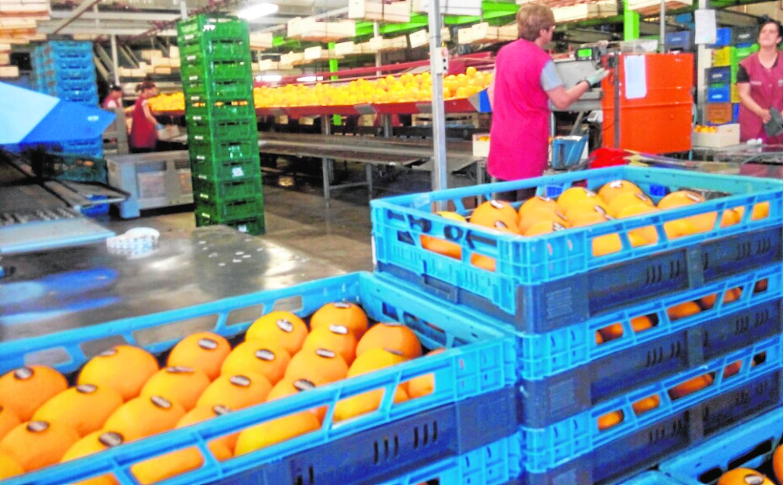 El consumo sostenible, lema del Día Mundial del Cooperativismo