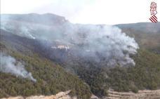 El incendio de Relleu calcina unas 20 hectáreas de terreno abancalado