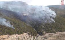 Un incendio forestal calcina 20 hectáreas en Relleu