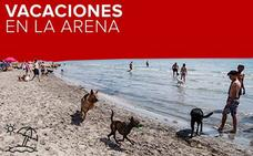La playa más dog-friendly de la Comunitat Valenciana
