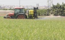 Fepex pide agua segura y suficientes fitosanitarios