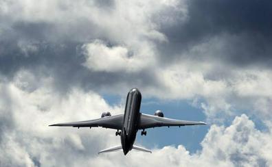 ¿Qué ocurre cuando un pájaro impacta contra un avión?