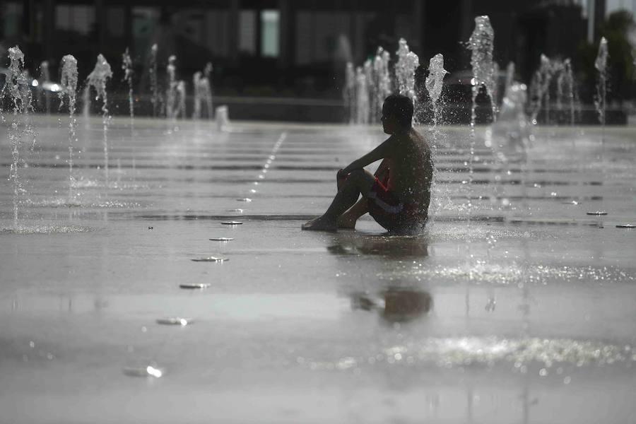 La ola de calor causa estragos
