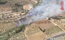 Arde una zona de vegetación cerca del río Gorgos en Alcalalí