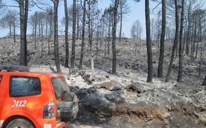 Así ha quedado la zona arrasada por el fuego del incendio de Llutxent