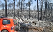 Así ha quedado la zona calcinada por el incendio forestal que asola Llutxent