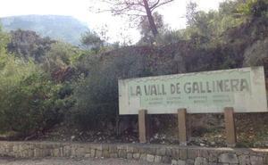 La Gallinera critica al Consell por excluirles de la nueva red de transporte público