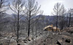 El incendio más grave en un lustro se ceba con seis términos municipales