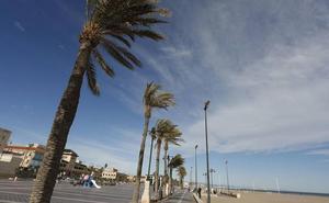 Los bomberos realizan 35 intervenciones por las fuertes rachas de viento en Valencia