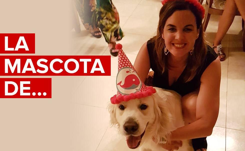 Sandra Gómez: «Las penas por maltrato animal siguen siendo ridículas»