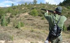 Desde hoy se pueden cazar palomas, urracas y estorninos en la Comunitat Valenciana