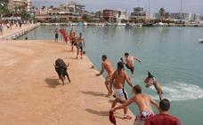 Una vaquilla cae al agua y muere en el puerto de Benicarló durante los Bous a la Mar