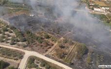 Estabilizan el incendio de Xaló tras calcinar cerca de tres hectáreas de cañar y vegetación
