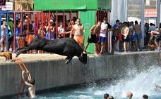 Los bous se lanzan al mar en Xàbia