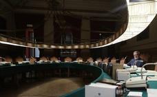 La comisión de la RAE trabaja en el informe de lenguaje inclusivo para la Constitución