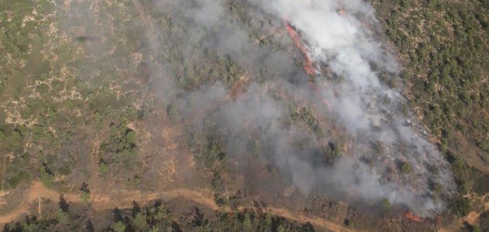 Estabilizado el incendio forestal de Requena