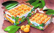 Frutaltea, un ejemplo de iniciativa y productividad