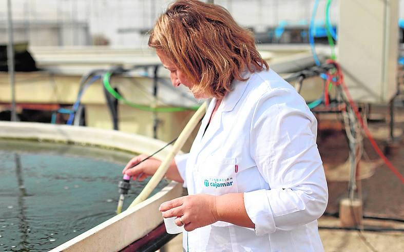 Incubadora de empresas de alta tecnología para la gestión del agua